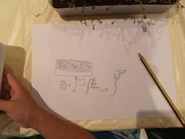 geneco_cultivatecentral_children_journal